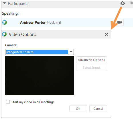 Video options dialog